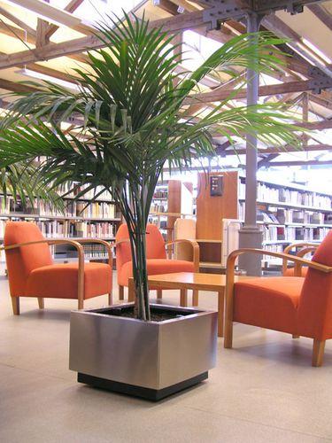 Metal-Inox-quadrada-ambient-plantes-vertes