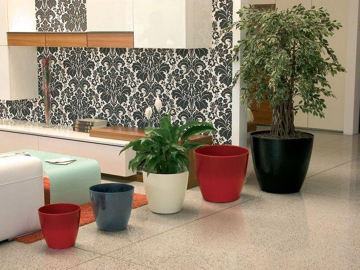 marchioro-bayon2-plantes-vertes