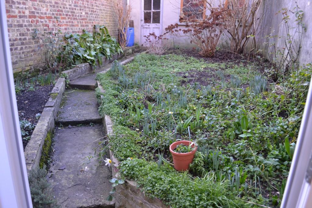 Après quelques heures de travaux intensif (défrichage du jardin ...